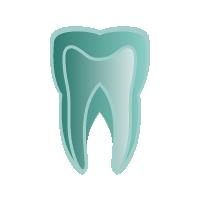 Endodontie - Wurzelbehandlung München